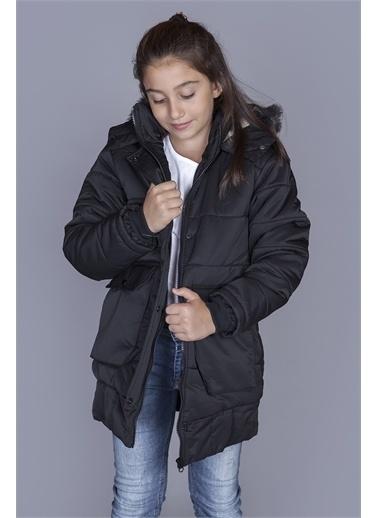 Toontoy Kids Toontoy Kız Çocuk İçi Yünlü Mont Siyah